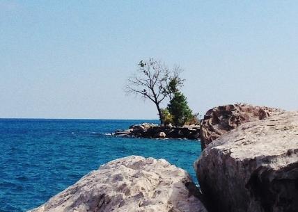Promontory Point. September.